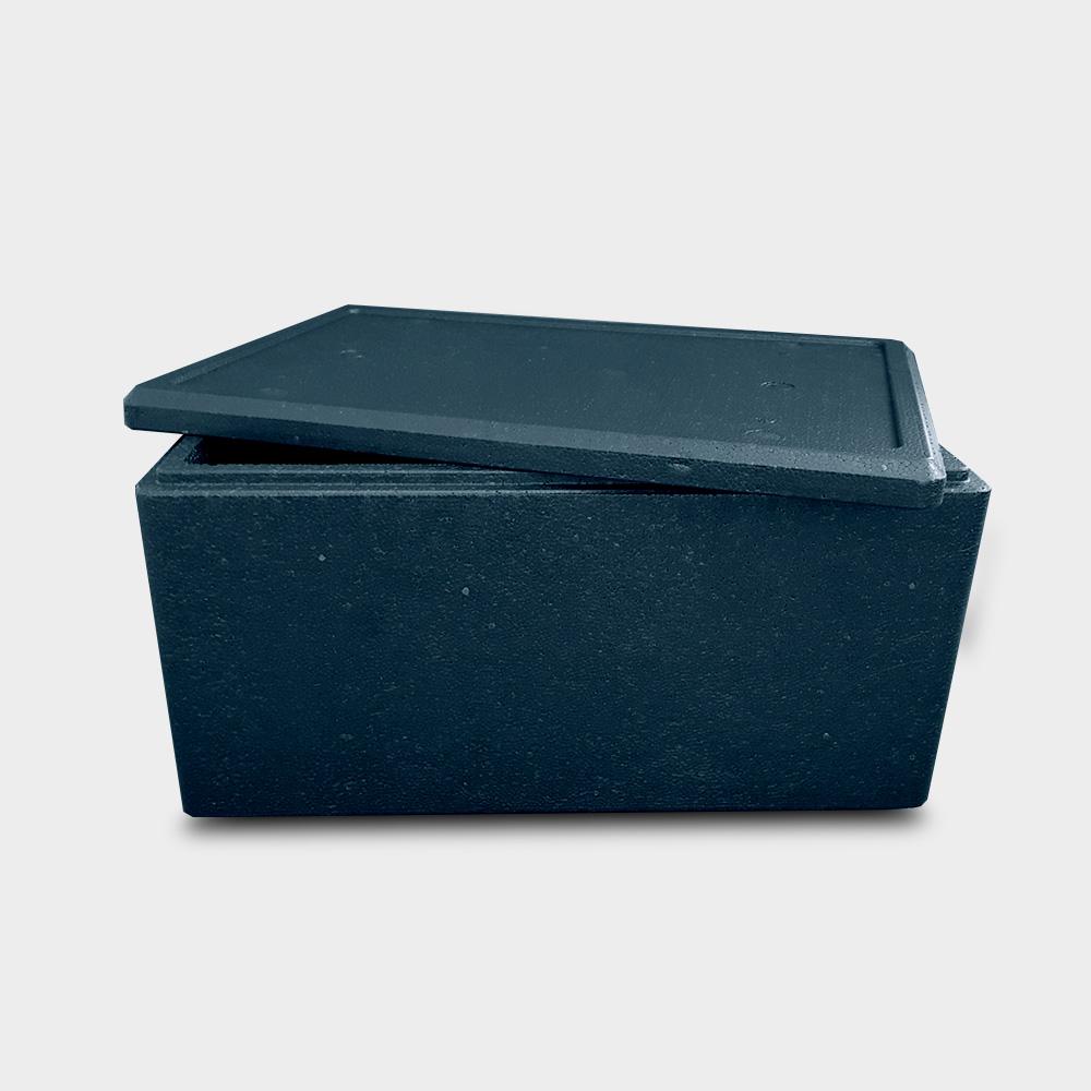 produkte thermoboxen ecocool bremerhaven k hlverpackungen k hlelemente thermoboxen. Black Bedroom Furniture Sets. Home Design Ideas